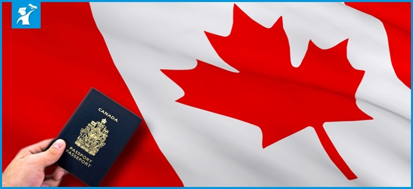 Учеба вКанаде