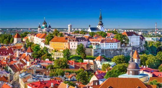 Второе высшее в Эстонии